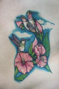colibris hibiscus-2