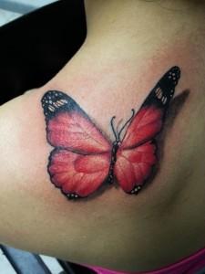 papillon rose-4