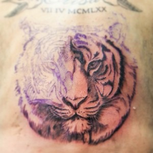 tigre francois en cours-1