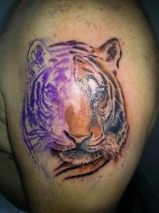 tigre pascal en cours-2